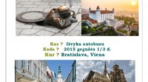 2015_05_01_Viena_page0001.jpg
