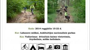 2014_08_15_22_Labanoro_miskais_maz.jpg