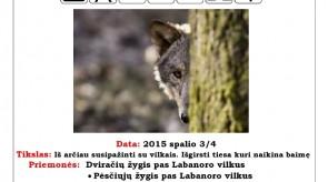 2015_10_3_4_Vilku_dienos_Labanore.jpg