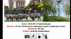 2016_05_14_Dviraciais_po_Nevezio_krasta.png