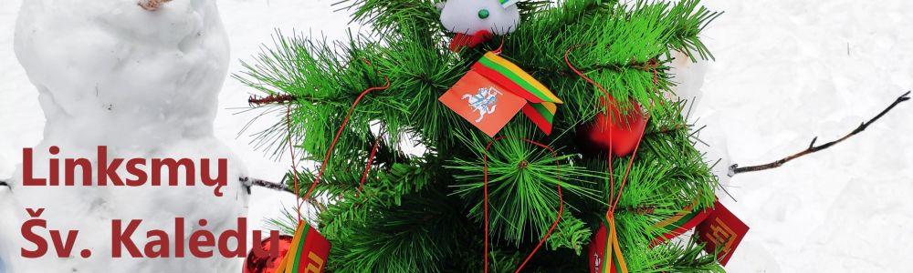 Laimingų Šv. Kalėdų ir linksmų Naujų metų !